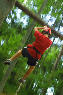 Limo Hire High Ropes Traversing